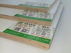 香港安居树生态板