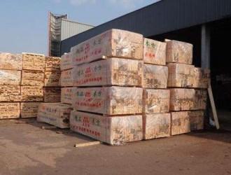 福建莆田开展木材加工企业帮扶活动