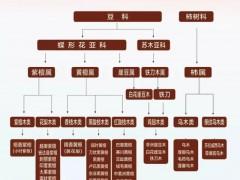 东莞乌木鉴定(阴沉木鉴定机构)