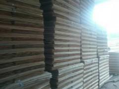 桉木板皮子