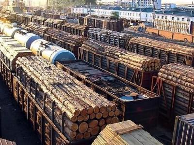 满洲里口岸俄罗斯木材进口量创同期历史新高
