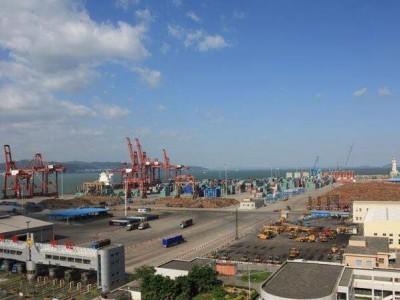 宁波口岸进口木材高达120万方 已成为我国重要口岸