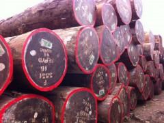 进口红花梨原木价格 红花梨木柱子加工厂家