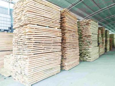 白杨木板材一定要烘干吗?
