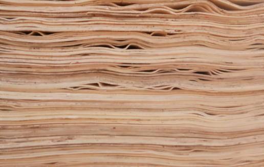 杨木单板产品视频