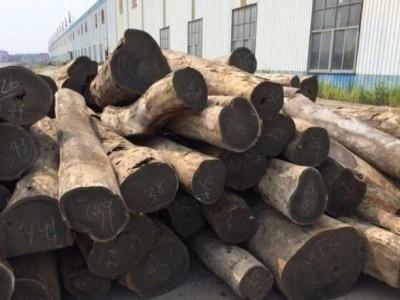 一手货源批发阿根廷绿檀原木