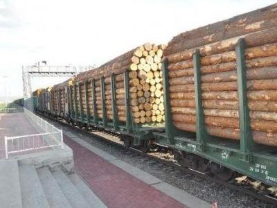 潍坊市加快口岸进口木材查验设施建设