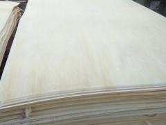 48尺32丝45丝(纯白 无结疤)漂白杨木大皮
