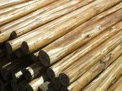 批发杉木杆