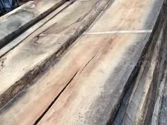 木业最新到港德国白橡实木板材 门床酒柜橱柜板 橡木 板材