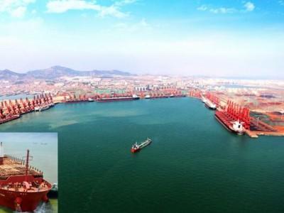 日照口岸今年已进口木材613万立方米 达历史最高