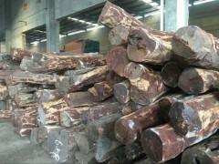 长期现货供应赞比亚血檀原木,高密,高油,精品料
