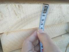 樟子松烘干木板材