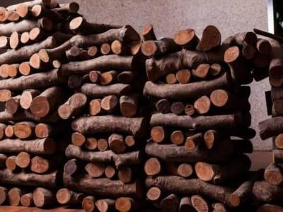 金丝楠木 黄花梨 紫檀 黑檀木等名贵木材的成品到底长什么样