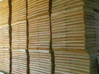 广东恒胜木业厂家直销杨木板皮