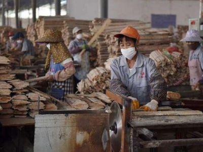 广西西林县赴福建考察取经木材加工等产业