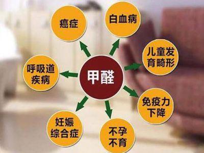 人造板甲醛释放限量团体标准复审会在北京召开