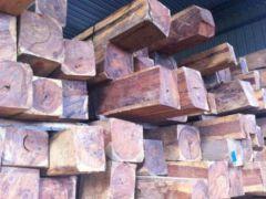 低价供应老挝花枝巴里黄檀原木