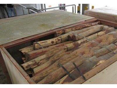 香港海关检获市值360万元黄檀木材