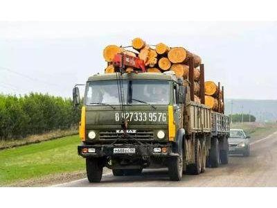 【焦点】因卡车司机短缺,北美市场加拿大木材林业损失千万美元