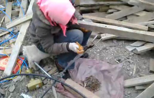 木材拔钉机