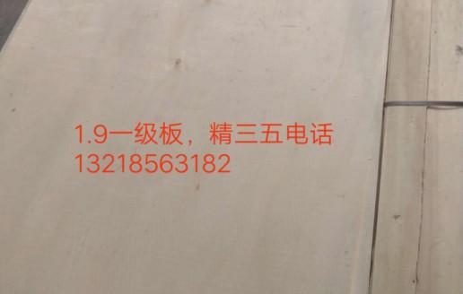 杨木三拼板生产视频_天盛杨木三拼旋切厂
