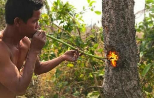 农村大叔靠着这首绝活伐木,一天就可以砍不少木材,年收入过50万 (140播放)