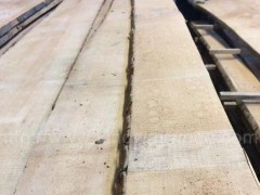 木业欧洲进口德国榉木毛边板地板材 家具材北欧风家居 楼梯