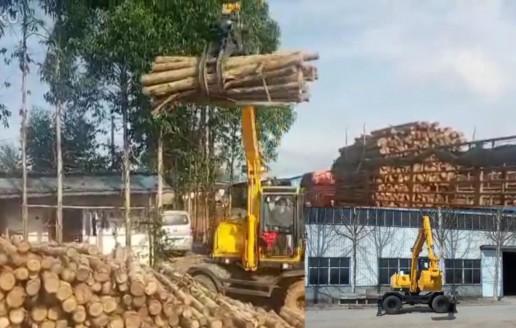 南宁抓木机-宝鼎95抓木机装卸木材视频介绍