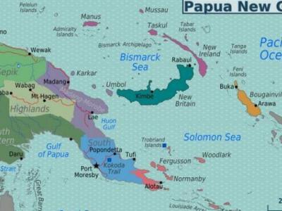 巴布亚新几内亚(巴新)的森林及木材树种资源