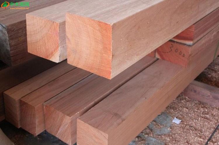 柳桉木木材的缺点