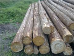 杉木板,杉木方,松木板,松木方