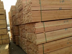 博远辐射松木方厂家