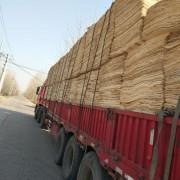 徐州林成木业