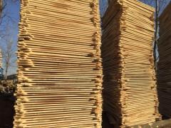 优质白杨木烘干板材