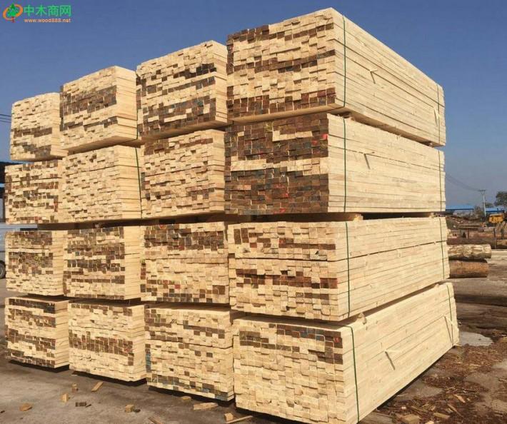 一季度张家港口岸进口集装箱运木材20.75万立方