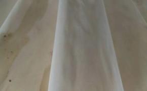 杨木原色木皮