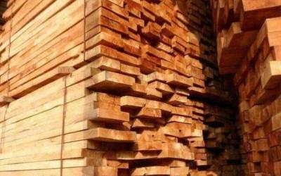 越南木材工业面临原料不足的困境
