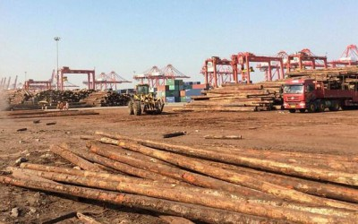 太仓港货车司机罢工暂未波及木材加工企业 切莫恐慌