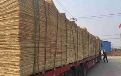 山东菏泽,安徽六安杨木单板严重缺货涨价10%!