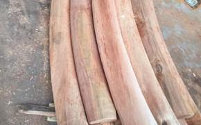 柳桉木厂家,柳桉木板材,柳桉木木材
