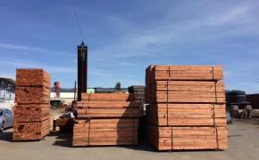 北美原木及木制品