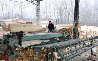 沭阳县一季度木材加工产业开票销售增长42.44%