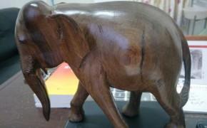 黄花梨木雕小象