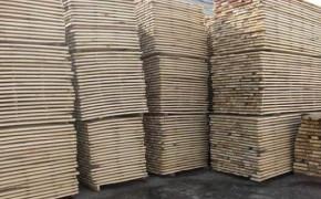 求购:白杨木烘干板