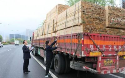 安徽绩溪县林业局严厉处理非法运输松木制品案件