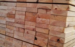 山樟木厂家最低价格
