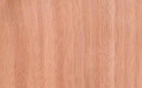 所罗门耐腐柳桉木景观材与马来巴劳木材料价是多少