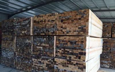 广西骏马木业成功在越南设厂