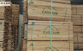 美国赤杨木实木板材厂家批发